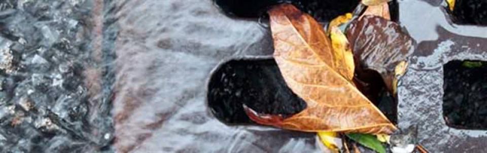 Verwijder blad uit je dakgoot!